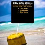 3 day detox form