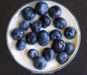 Vegan Coconut Yogurt