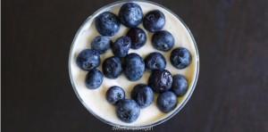 Vegan Coconut Yogurt FTR
