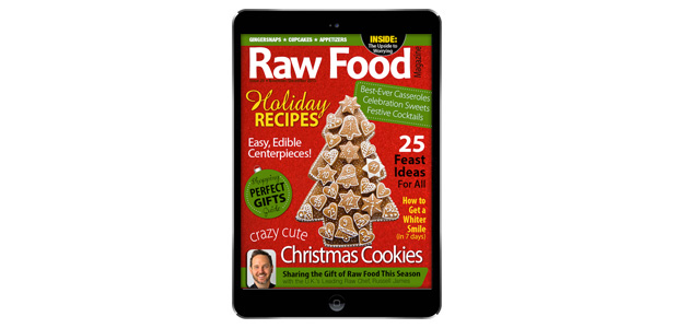 Holiday Recipes & Christmas Cookies Issue