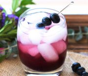 Probiotic Blueberry Apple Cider Vinegar Shrub