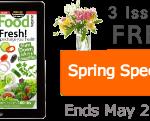 Raw food recipes spring special