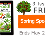 Raw food recipes spring special 2014