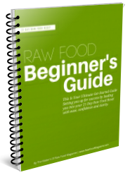 RawFoodReset-Beginners-Guide-BONUS-spiralbound-cover