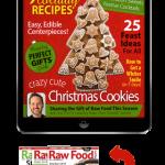 christmas-raw-food-recipes-magazine