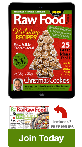 Christmas raw food recipes magazine raw food magazine christmas raw food recipes magazine forumfinder Image collections