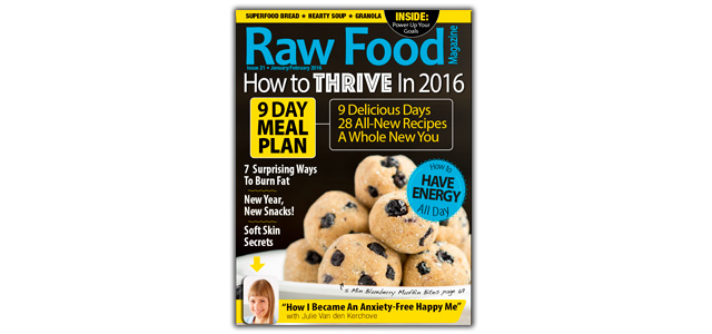 2016 Ultimate Energy & Meal Plan Issue
