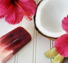 Agua de Jamaica Hibiscus Tea Summer Popsicles