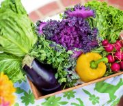 For fresh local produce each week check to see if there is a CSA in your area.